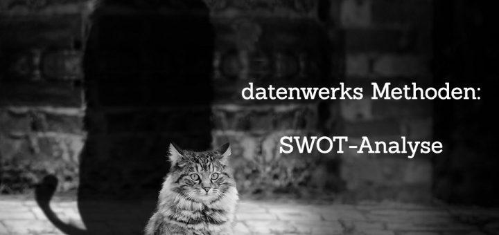 swot_header