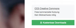 Screenshot von Pixabay.com, der zeigt wo sich Informationen zur Lizenz genau befinden.