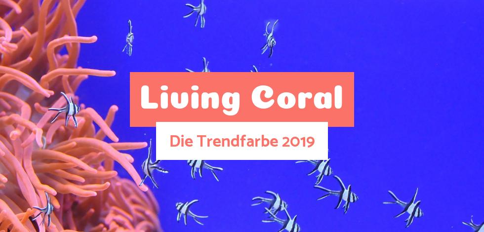 Bild: Eine pinke Koralle auf blauem Hintergrund mit Fischen. Dazwischen der Text Living Coral, die Trendfarbe 2019.