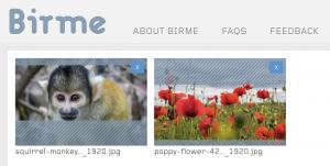 Screenshot der Online-App birme.net für Bildanpassungen