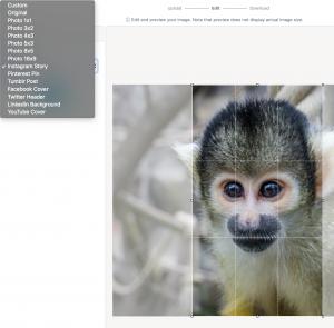 Screenshot der Online-App resizepixel.com für Bildanpassungen