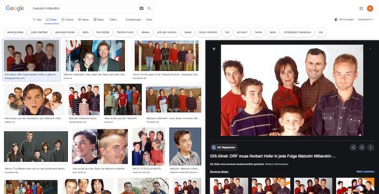 """Screenshot der Google Bildersuche zu Bilder SEO nach """"Malcolm mittendrin"""" (Stand: 20.08.2019): Ein Bild zeigt dabei den FPÖ-Politiker Norbert Hofer als Familienvater Hal"""