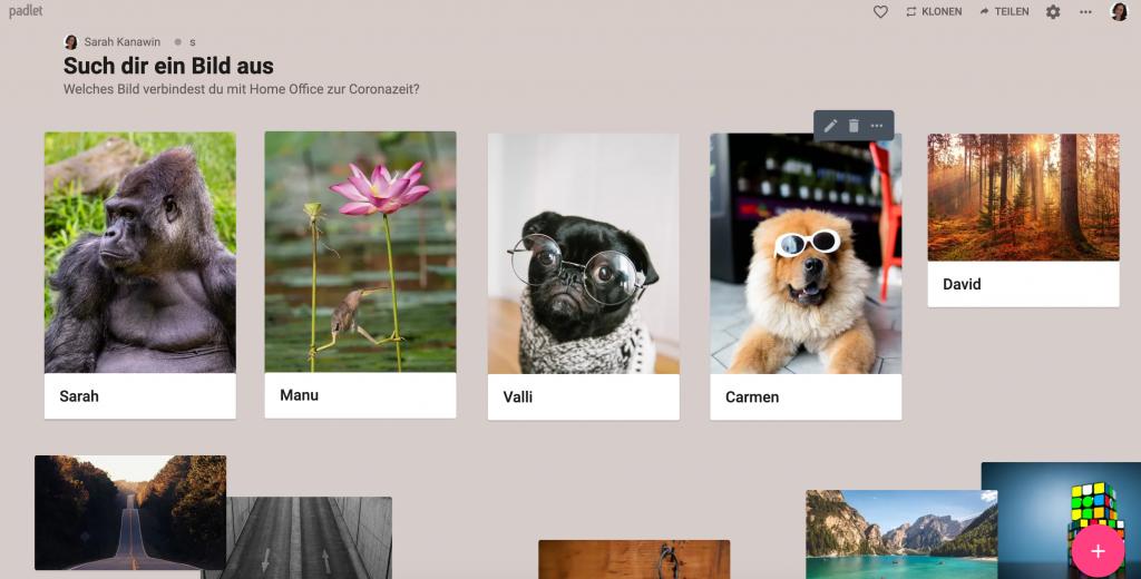Screenshot von den ausgewählten Bildern mit Namen